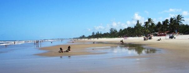 beach,canavieras,Bahia,brazil