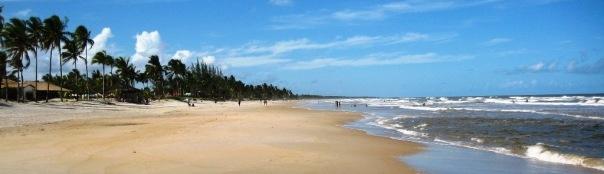 bahiabrasilieninfo_20141.jpg